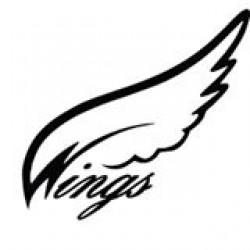 Wings Reserve Pilot Chute